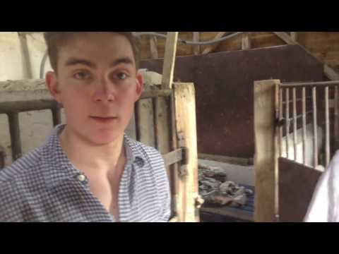 Hampshire Forestry Commission Deleted Scene - The Barn