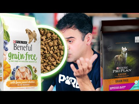 The Rise & Fall Of Grain-Free Pet Food