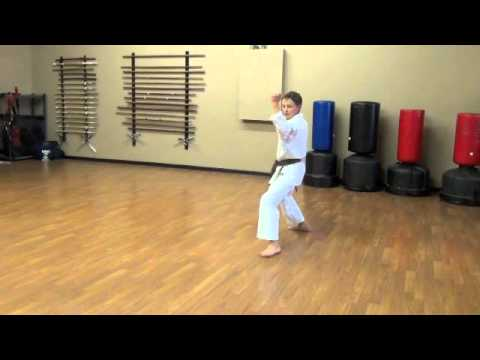 Lincoln Budokan, Jitte Kenkojuku Shotokan Karate
