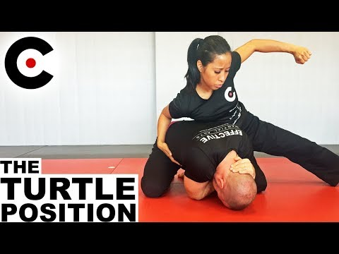 The Turtle Position - Top Control, Strikes, & 10 Ways to Escape | EMA