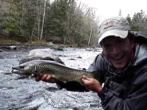 Fly fishing maine landlocked salmon youtube for Maine out of state fishing license