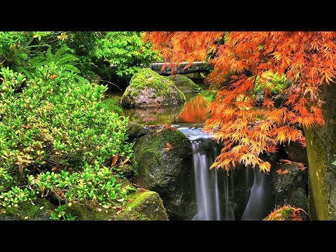"Peaceful Music, Relaxing Music, Instrumental Music ""Autumn in New England"" By Tim Janis"