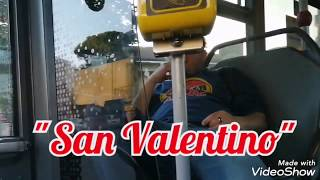 "FIRENZE - BUS-LIFE: ""San Valentino"""