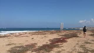Venus Beach Hotel 5 Кипр Вдоль набережной