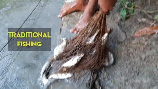 Traditional Fishing In a village pond || Fishing in Bangladesh || Amazing Fishing