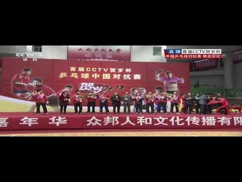 2013 China Lunar New Year Cup [Full HD/Chinese]