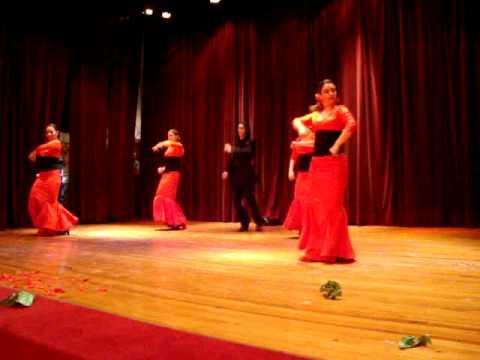 Flamenco Rosa Maria
