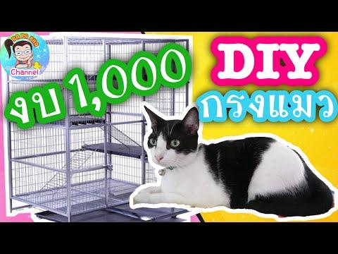 สอนทำ กรงแมว DIY ทำเองง่ายๆ งบไม่เกิน 1,000 บาท