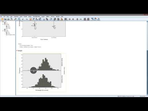 Graphs and descriptives for t-test in SPSS
