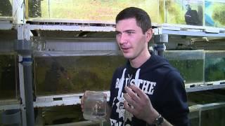 Заводчик рыб