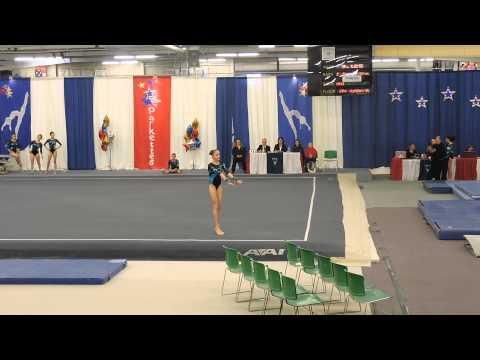 Emily Carey Level 9~Northeast Gymnastics Academy~2015 Parkettes Invitational~Floor