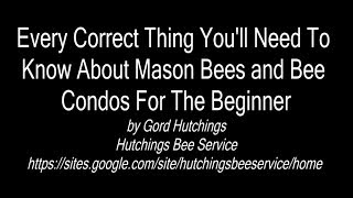 Every Correct Thing You'll Need To Know About Mason Bees and Bee Condos For The Beginner