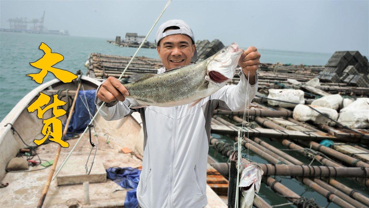 鱼排下来了罕见巨物,估计有20斤以上,直接把陷阱扯断了