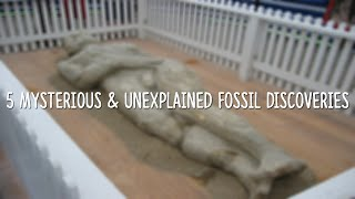 5 Mysterious & Unexplained Fossil Discoveries