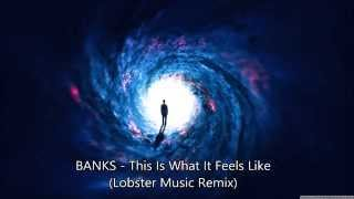 BANKS - This Is What It Feels Like (Lobster Music Remix)