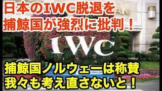 【IWC脱退】日本に非難続出の中、捕鯨国ノルウェーから称賛の声!【海外の反応】【なぎさチャンネル】