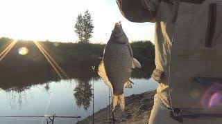 Рыбалка в Деревне На Карася Вечерняя Зорька Варган Из ЕКБ Жареный Карась