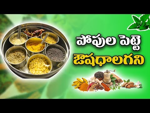 Wonderful Daily Health Tips for Your Family with ayrveda||kai tv media