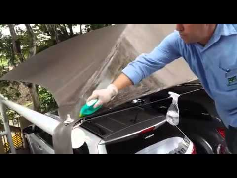 SPRAY & WIPE (SB) Solution to Clean Algae Stains on Canopy