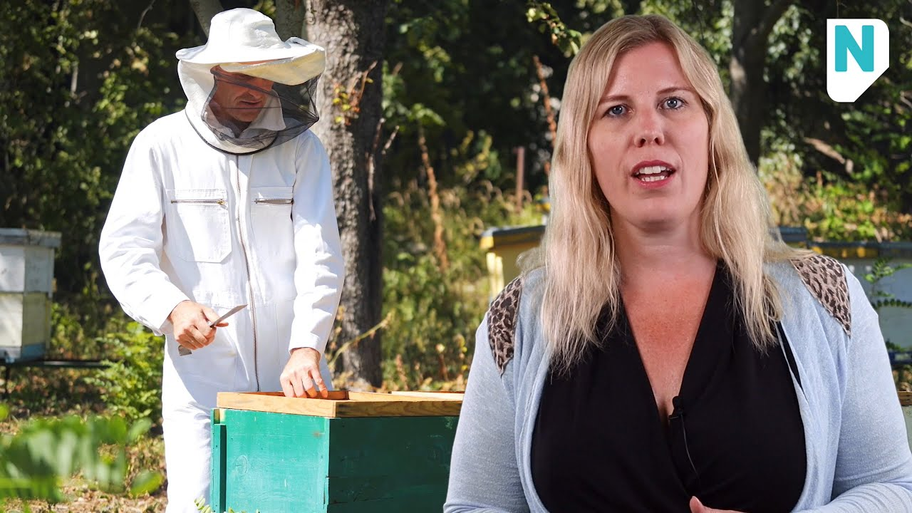 Still uit de video 'Jessica weet raad: wat moet ik als kleine stichting met de Wet bestuur en toezicht rechtspersonen?'