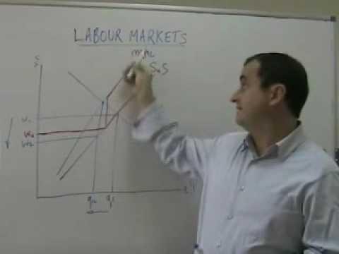 wage determination in imperfect labour markets