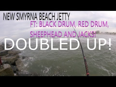 NEW SMYRNA BEACH JETTY FISHING (2019)