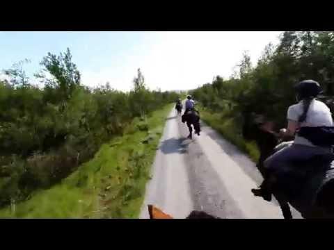Horseback riding in the Norwegian mountains - Saturday