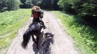 Fun gallop  GoPro HORSEriding ,  adventure