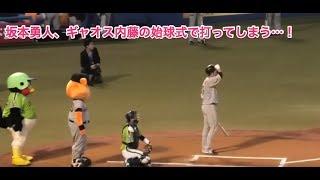 坂本勇人、ギャオス内藤の始球式で打ってしまう…!
