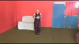 Kung fu Chinês-  estilo Pequenos Dragoes. Professor Israel.