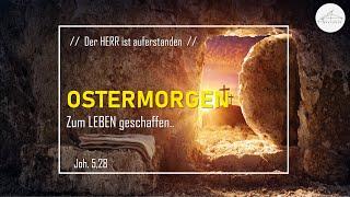 OSTERMORGEN - Zum LEBEN geschaffen.. - 04.04.2021