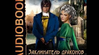 2001347 01 Аудиокнига. Вернер Анастасия