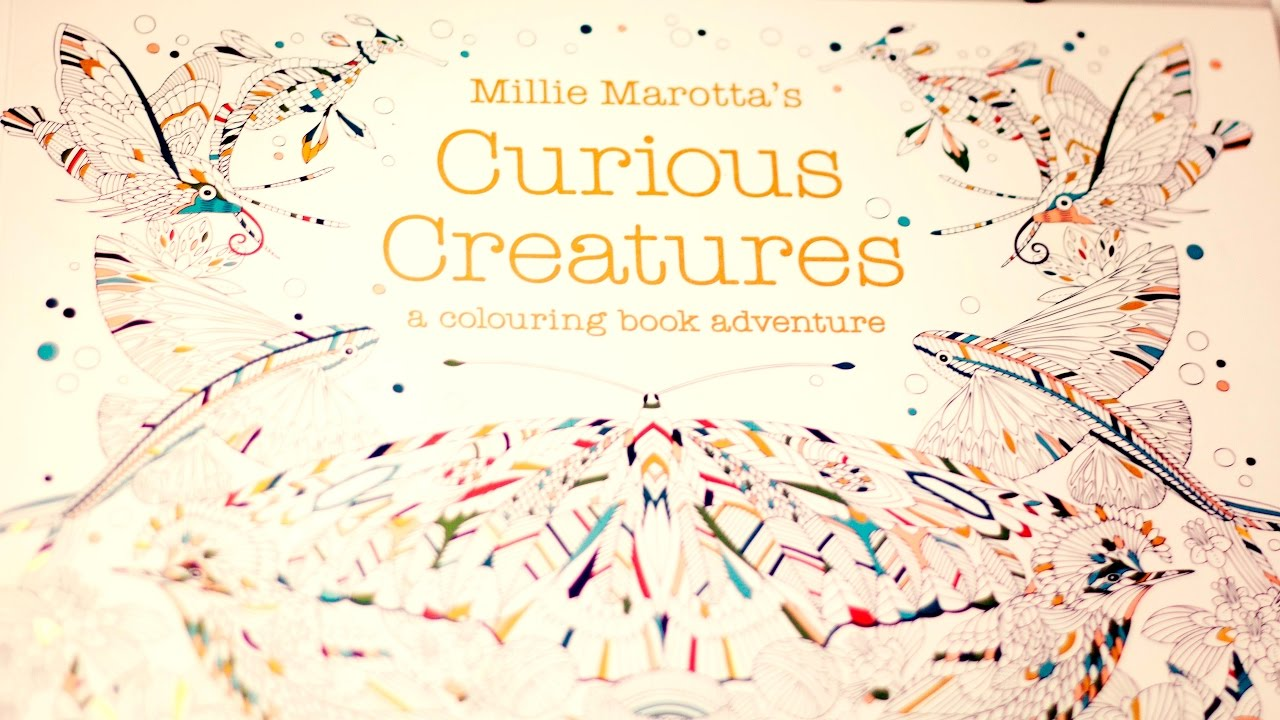 Millie Marottas Curious Creatures Adult Coloring Book Flip Through