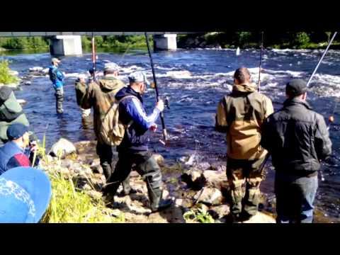 рыбалка на терском берегу дикарем