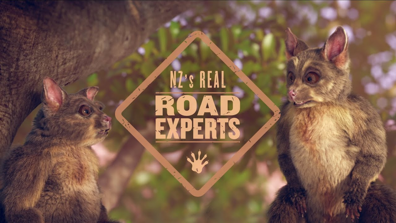 The Real Road Experts
