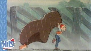 Niels Holgersson - In de regen