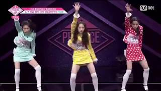 [Produce48] HOW Entertainment - Celeb Five - Celeb Five I Wanna be a Star