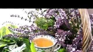 Купить монастырский чай в Москве
