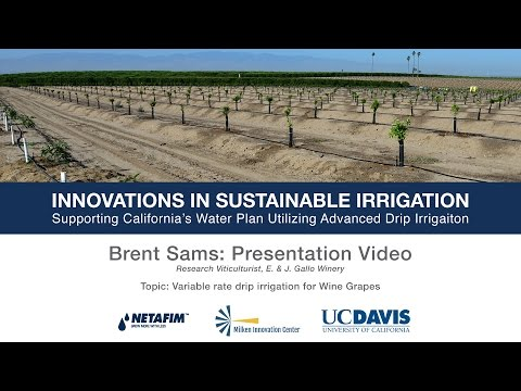 Variable Rate Drip Irrigation for Vineyards - Brent Sams