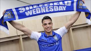 Sheffield Wednesday - Best Moments 2015-2018