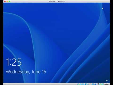 Windows 11 New Startup Sound
