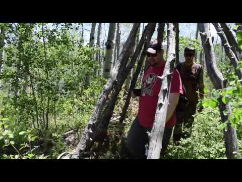 New Findings With Colorado Bigfoot And Dan 1