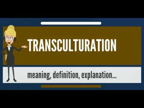 Transculturation | what it is, characteristics, history, process.