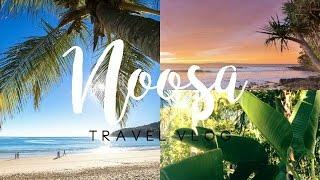Noosa | Travel Vlog thumbnail