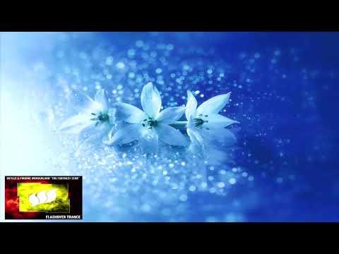 Skylex & Finding Wonderland - The Farthest Star (Extended Mix)