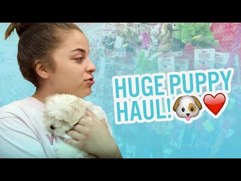 Huge Puppy Haul! | The Martins