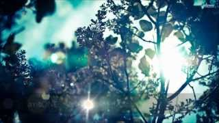 Summer Breeze Sessions #005 - axisONE Guest Mix (2013-03-15)