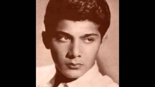 Watch Paul Anka Hello Young Lovers video