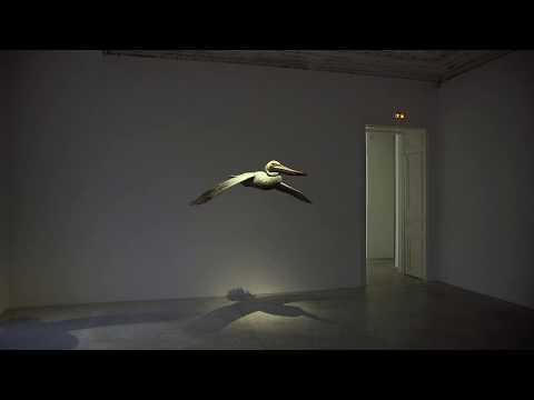 Alex Israel – Pelican, 2017