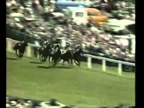 Shergar- The 1981 Epsom Derby (Epsom Downs)